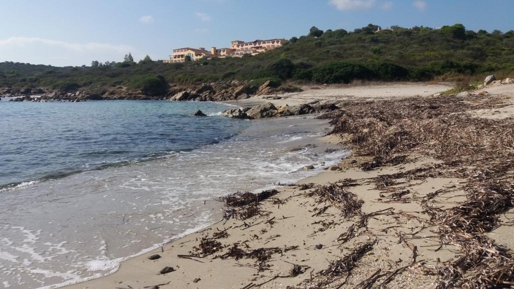 Spiaggia Punta Pedrosa Terrata