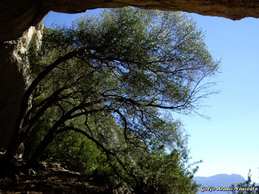 Grottone di Rocca Ruja - Monte Ruju